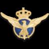 insignia-piloto-comercial-cinectic